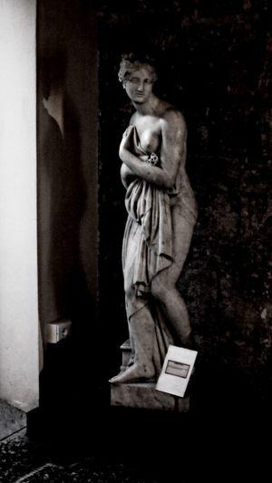 Art And Craft Close-up Female Likeness Human Representation Indoors  Male Likeness Night No People Sculpture Statue Venere Venere Italica