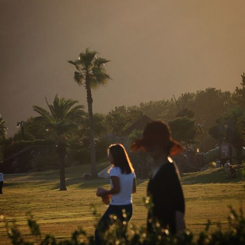 Togetherness Adult Family With One Child Child Family Tree People Women Childhood Females Palm Tree Shadow Girls Outdoors Night Real People 広野公園 海岸 Yellow Sunsets Japan Photos Friendship Sky Nature Young Adult