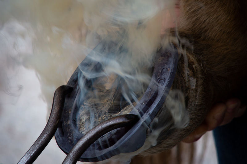 A new pair of shoes Blacksmith  EyeEmNewHere Horseshoe Working Animal Close-up Day Focus On Foreground Holding Horse Outdoors Smoke - Physical Structure EyeEmNewHere