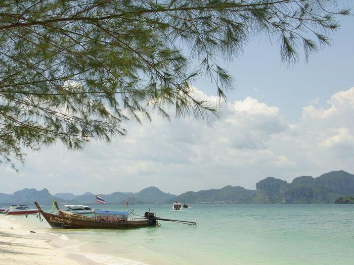 Andaman Andaman Sea Blue Sea Blue Sky Blue Wave Day Island Krakow Limestone Islands Outdoors Thailand Whitesand