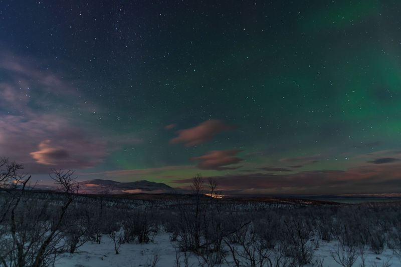 Scenic view of snowcapped landscape against sky at night with aurora borealis