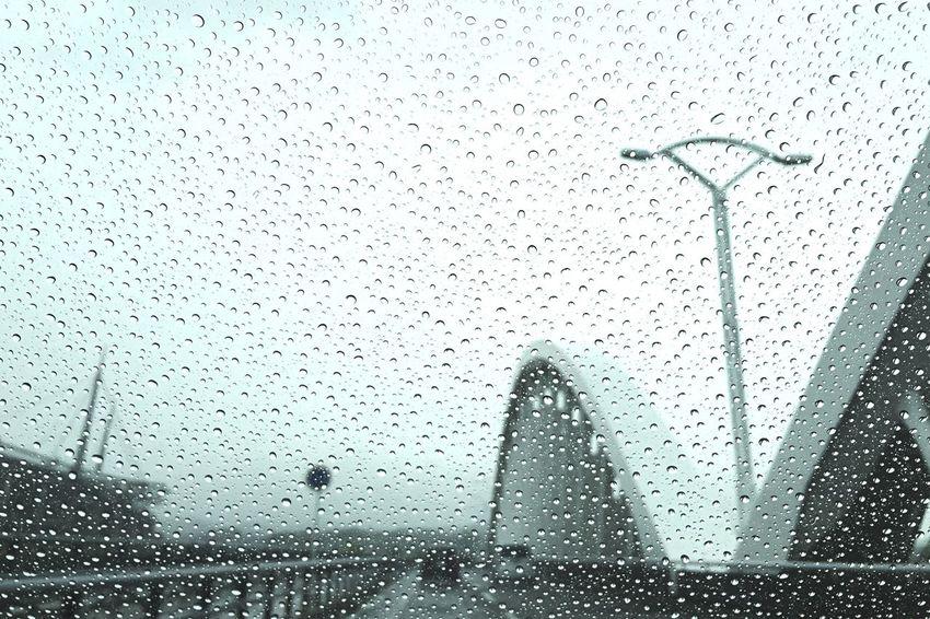 シトシト☔︎ EyeEm Eye4photography  EyeEmBestPics EyeEm Best Shots My Smartphone Life Shootermag_japan IPhoneography VSCO EyeEm Nature Lover Sky Rainy Days Raindrops