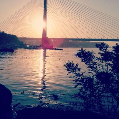 Beograd MostnaAdi Srbija Belgrade adabridge serbia sunset sun river bridge water reflection landscape nature naturelovers sky