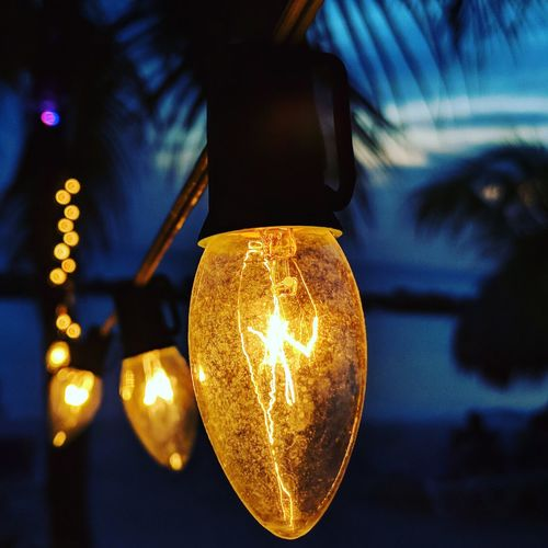 Low angle view of illuminated light bulb hanging from palm trees
