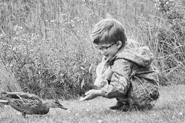 Side view of boy by duck on land