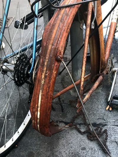 Bicycles from my point of view Tied Rusty Bycycle The Week On EyeEm Transportation Transportation Bicycle Rusty Damaged Mode Of Transport Wheel No People Abandoned Day Close-up Outdoors
