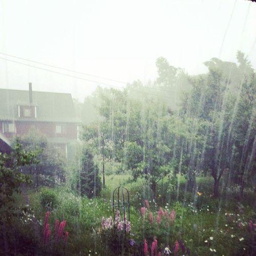 На даче жесткий ливень