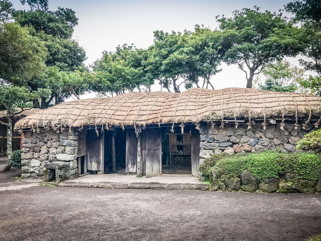 House made of valcano stone and wood structure in Seongeup Folk Village, Jeju Island, Korea Home Jeju Island, Korea Seongeup Seongeup Folk Village Architecture Beauty In Nature Building Exterior Built Structure Day Folk Village Growth House Nature No People Outdoors Sky Stone Material Stone Wall Tree Valcano Wooden House