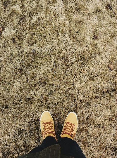 Spring coming ✌?? Spring Streetphotography Nexus5 Volgograd Yellow Brown Street Photography Taking Photos Foots