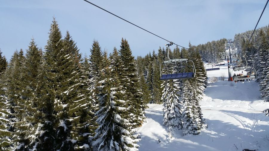 Snow Winter Cold Temperature Tree Plant Beauty In Nature Mountain Nature Sky Cable Car Land Scenics - Nature Cable Day Ski Lift Non-urban Scene Overhead Cable Car White Color Tranquility No People Pine Tree Coniferous Tree Snowcapped Mountain