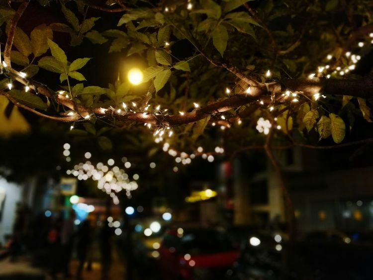 Illuminated Night Christmas Lights Tree Branch Outdoors Outdoors Photograpghy  Night Photography City Life People Silhouette City Lights City Street City At Night City Explorer EyeEmNewHere Welcome To Black
