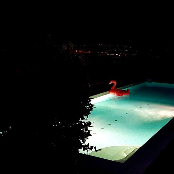 No People Water Night Outdoors Flamingo House Swimming Swimming Pool Party Summer Light Hills Assisi Italy Luxury Rich Cocktail Happy Party Time Nightphotography Alcohol Richpeople Beautiful Beautifully Organized Perfect The Street Photographer - 2017 EyeEm Awards The Architect - 2017 EyeEm Awards The Great Outdoors - 2017 EyeEm Awards Sommergefühle Neon Life Breathing Space