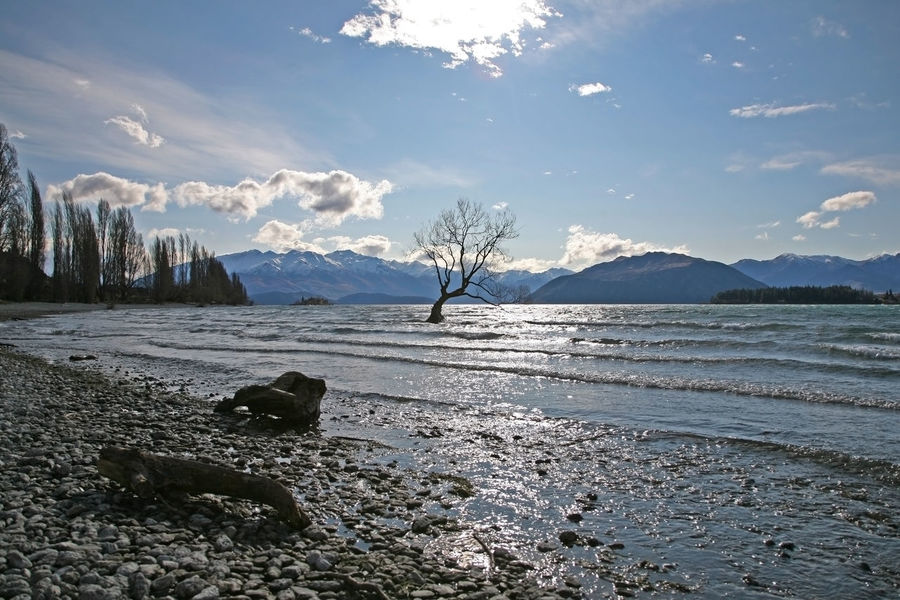 Sunny Wanaka Wintertime Beauty In Nature Cold Temperature Lake Lake View Lakeshore Lakeside Mountain Mountain Range Nature No People Outdoors Scenics Sky Snow Tranquil Scene Tranquility Wanaka New Zealand Wanaka Tree Wanakalake Water Winter