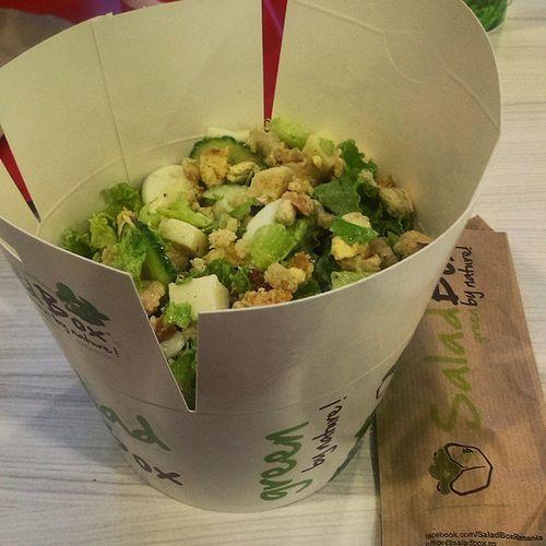Caesar Healthy Saladbox Yum green