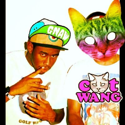 Tyler The Creator  CATWANG swag yolo peace nudy wiec spac dobranoc goodnight