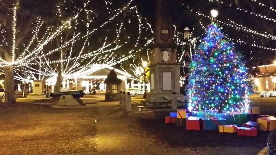 Best Christmas Lights St. Augustine Beach Fl Florida Life Florida Night Of Lights  Seeing The Sights
