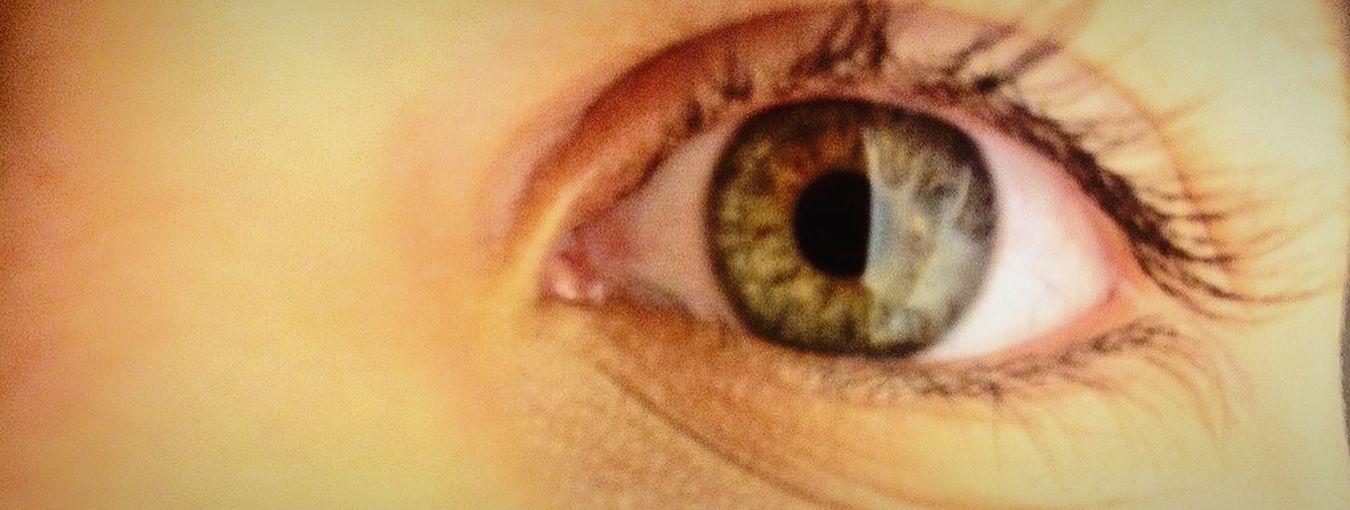 •3 WayDownWeGo Eye Greeneyes