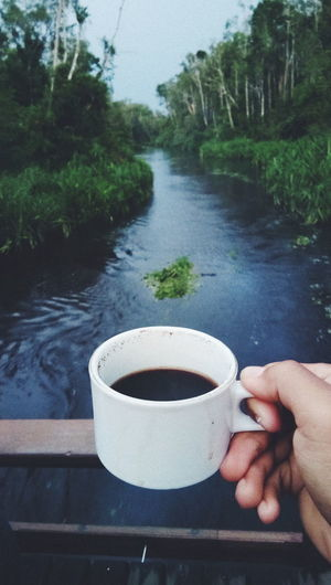 coffe morning Coffee Coffee - Drink Coffee Cup Crockery Cup Drink Finger Food And Drink Hand Holding Human Body Part Human Hand Lifestyles Mug One Person Outdoors Plant Real People Refreshment Tea Cup Tree Unrecognizable Person