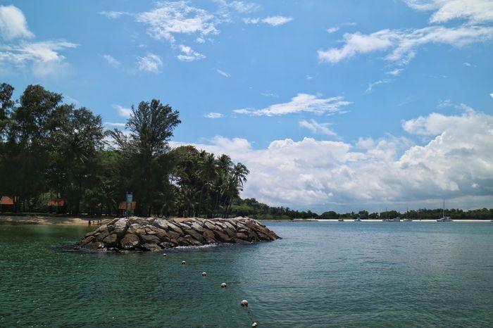 Beauty In Nature Cloud - Sky Nature Nparks Nparksbuzz Scenics Sky Tree Water