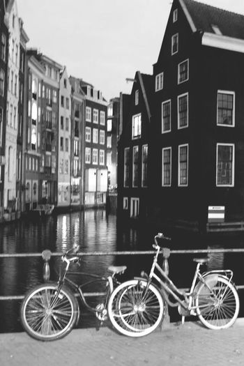 Holanda I Love To Ride Mi Bicicle Bike Dutch Enjoying Life