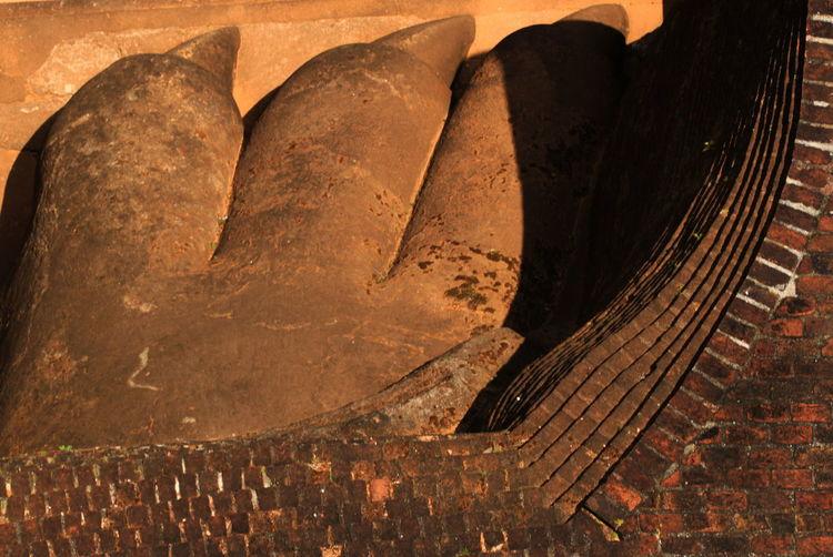 Ancient Civilization Close-up Day Detail Directly Above Lion Claws No People Old Sigiriya Rock Sri Lanka