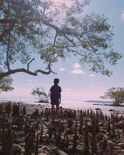 Tree Water Full Length Politics And Government Beach Standing Silhouette Men Sea Rural Scene
