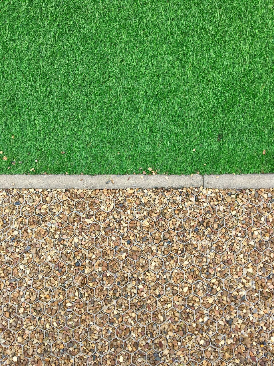 grass, leaf, green color, nature, high angle view, autumn, outdoors, day, no people, playing field, sport, soccer field