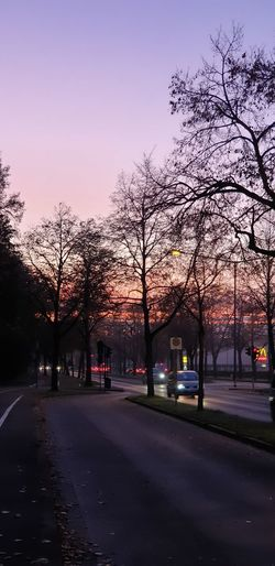 Road by trees in city at sunset