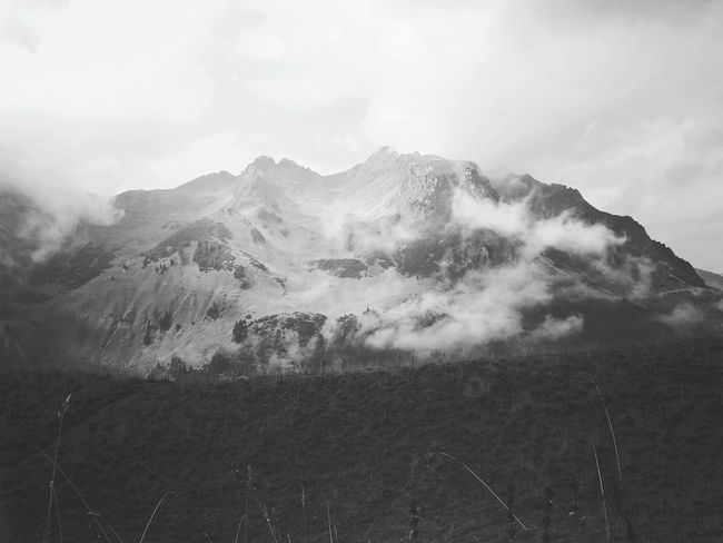 Alpen Alpenwelt Allgäuer Alpen Allgäu Blackandwhite Blackandwhite Photography Mountain Fog Tree Winter Sky Landscape Cloud - Sky Grass Growing Snowcapped Mountain Foggy Weather Cold Temperature
