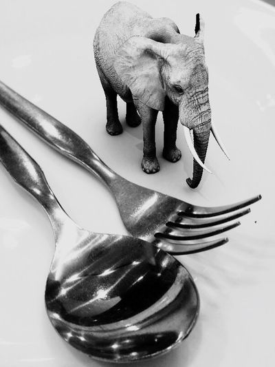 Elephant, fork and spoon on a white dining plate. Blackdrawing Artist IPhoneography Black And White Bw Art Blackandwhite Hello World Mixedmedia ArtWork