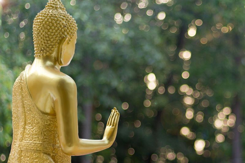 Golden buddha statue against trees
