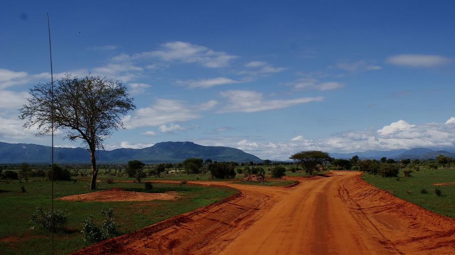 Africa Kenya Tsavo Est Nature Tree Sky Cloud On Moves Road Bare Tree Cloud - Sky Landscape Plant Environment Transportation The Way Forward