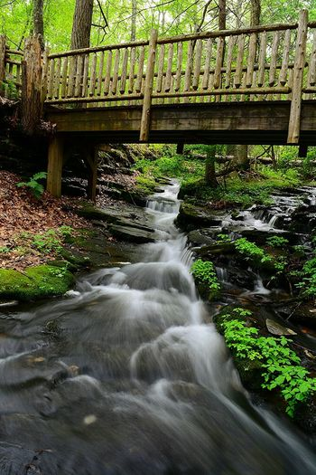 Waterscape Water_collection Nature Nature_collection The Great Outdoors - 2015 EyeEm Awards Bridgesaroundtheworld Statepark Pennsylvania Beauty Landscape_Collection Nikon D7100