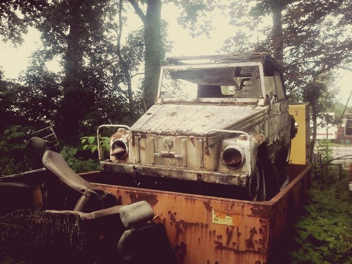 Wreck Scrap Car Scrap Car Nature Volkswagen 181