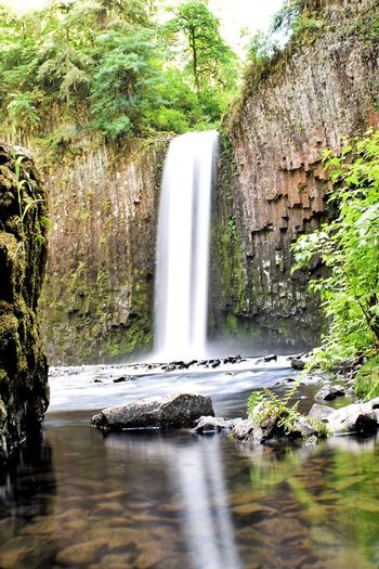 Abiqua falls Enjoying Life Oregonexplored Oregonlife Outdoor Photography Beauty Is In The Eye Of The Beholder Great View Waterfall_collection Waterfall #water #landscape #nature #beautiful Waterfalls And Calming Views  Longexposure Longexposurephotography Living Life