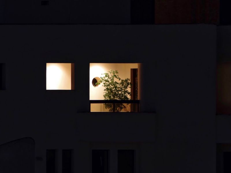 Lines And Shapes Square City City Life Urban Geometry Geometric Shape Nightphotography Window Architecture Built Structure Plant Tree No People Indoors  Building Nature Illuminated Low Angle View Night Wall - Building Feature Dark House Silhouette Potted Plant Indoors