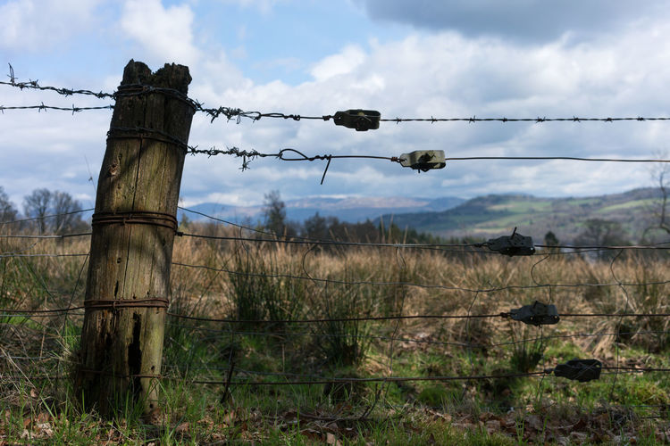 An old barb wire fence in the Scottish Highlands Sky Cloud - Sky Land Field Protection Nature Wire Plant No People Fence Day Barbed Wire Security Barrier Boundary Safety Landscape Metal Grass Tree Wooden Post