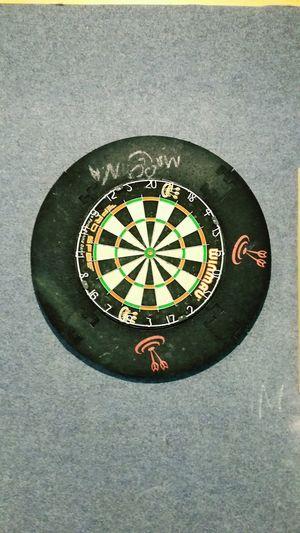 Dart , board, win, steel darts, sport, Enjoying Life Holiday