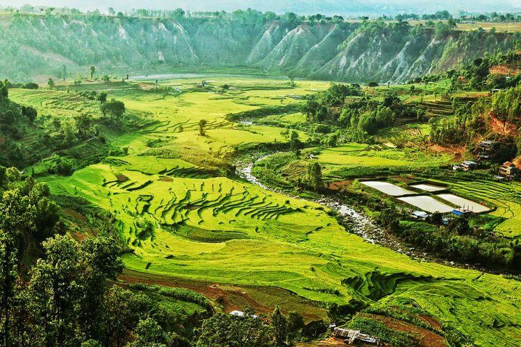 Landscape Of Nepal Field