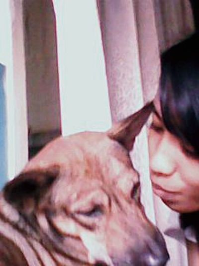 Hello World .. It's My Dog jacko his name .. So Cute 😊