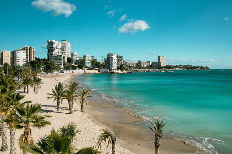 Beach landscape in Alicante, Spain Water Built Structure Building Exterior Architecture Beach Sky Sea Nature Land Tree Palm Tree Plant City Cloud - Sky Tropical Climate Building Sand Day No People Office Building Exterior Outdoors Skyscraper Cityscape Turquoise Colored Landscape