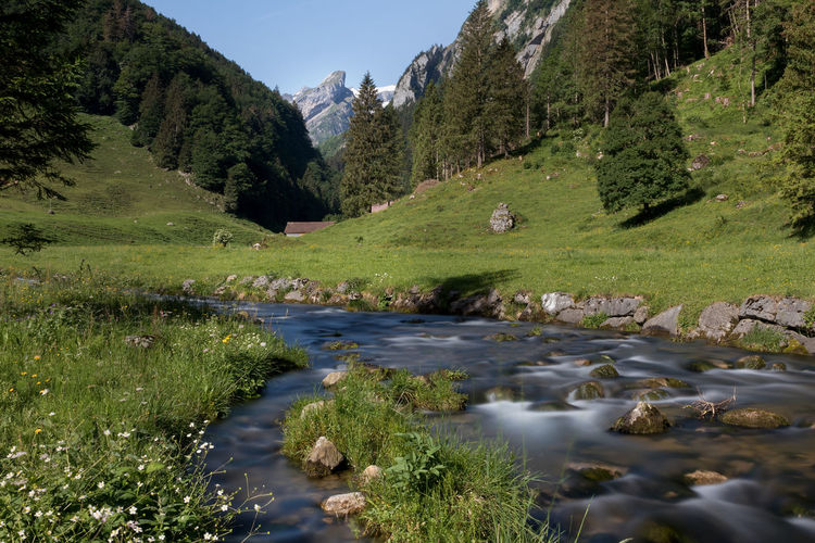 Beauty In Nature Day Flowing Flowing Water Green Color Growth Land Mountain Mountain Range Nature No People Non-urban Scene Outdoors Plant River Rock Scenics - Nature Sky Stream - Flowing Water Tranquil Scene Tranquility Tree Water