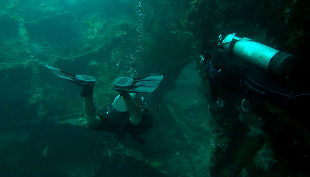 Men and women dive on the wreck of freedom in Tulamben , Bali Adventure Aquarium Beauty In Nature Blue Day Lifestyles Nature Outdoors School Of Fish Scuba Diving Sea Life Swimming Tulamben UnderSea Underwater Water