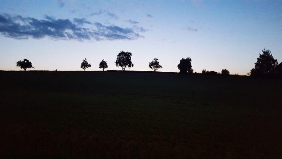 木 ต้นไม้ עץ