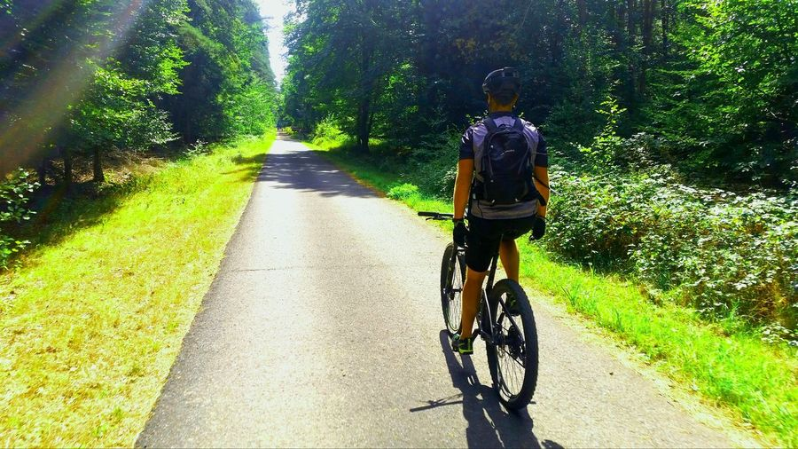 straight ahead Sunlight Real People Bicycle Nature Road Day One Person Outdoors Riding Shadow Tree
