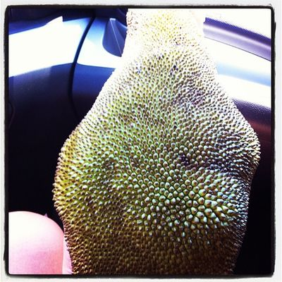 Jackfruit Gofruityourself Whatveganseat