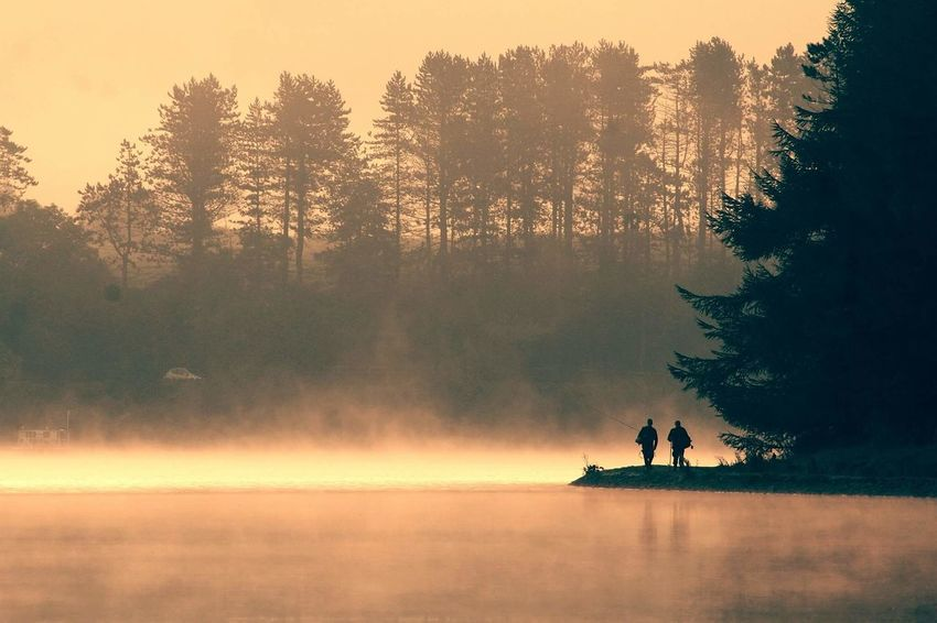 EyeEm Best Shots Fisherman Early Morning Glow Gold Water Sunset Tree Reflection Lake Silhouette People Men