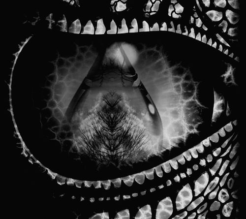 Dragons Eye Black And White Photography Eyeem Monochrome My Monochrome World Black And White Collection  Creative Photography This Is My Art!!! Blended Images My Artistic Side Artsy Photography EyeEm Creative My Creativity Feeling Artsy Artistic Photo No Edit No Fun Fantasy Edits