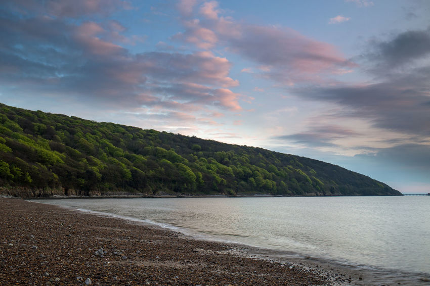 Sand Bay Somerset England Trees Beach Beauty In Nature Cloud - Sky Forest Idyllic Land Landscape Nature No People Non-urban Scene Outdoors Scenics - Nature Sea Seascape Sky Sunset Tranquil Scene Tranquility Tree Uk Water Weston Woods
