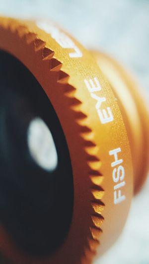 Fisheye Fish Eye Macro Macro Photography Macro_collection Macrophotography Macro_captures Macroshot Macrolens Lens